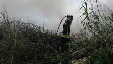 Photo of Extinguido el incendio ocurrido en la Reserva Natural de Las Albuferas de Adra