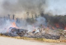 Photo of Controlado un incendio de grandes dimensiones en los alrededores del Camino de la Botella