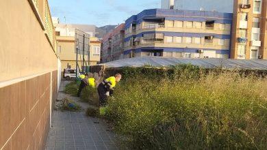 Photo of Reincorporación total de los trabajadores municipales de mantenimiento y conservación del Ayuntamiento de Adra