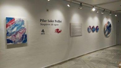 Photo of Adra reabre la exposición 'Suspiros de agua en época de la Covid-19' de la artista Pilar Soler