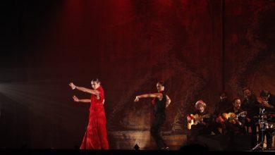 Photo of Adra será escenario del décimo aniversario del flamenco como Patrimonio de la Humanidad