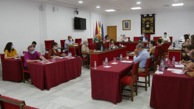 Photo of Adra declara el 2 de enero como Día del Municipio