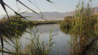"""Photo of El Río Adra y la Albufera, lugares """"de importancia comunitaria de la región biogeográfica mediterránea"""""""