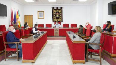 Photo of Adjudicada la creación de la nueva página web y el portal de transparencia del Ayuntamiento de Adra